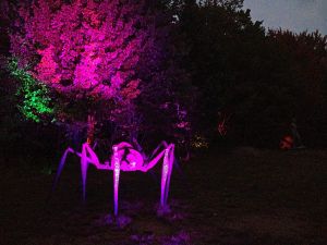 Night Lights at Griffis Sculpture Park, 6902 Mill Valley Road, East Otto. This 400-acre park near Ellicottville is home to over 250 sculptures — many of which you can climb up, in and on. It is one of the largest outdoor sculpture parks in the U.S.