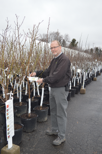 "Dennis Keady, general manager at Garden Factory, Syracuse. ""It's not so much about the cost but about getting outside and enjoying the experience,"" he says about gardening."